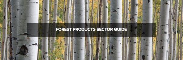 La elaboración del manual tiene el propósito de ofrecer a todos los integrantes de la cadena de valor de los bosques una guía más rigurosa sobre cómo integrar los riesgos y oportunidades ligados al capital natural en sus decisiones internas.