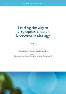 El desarrollo de una estrategia circular a largo plazo de la bioeconomía requiere estar conectado a través de sectores y políticas clave y en un marco político coherente.