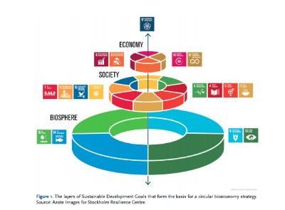 Una transición hacia una bioeconomía circular permitirá cumplir los ODS y el Acuerdo de París.