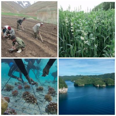 Panorama conecta a los profesionales y planificadores de la conservación y el desarrollo a través de todos los sectores y regiones.