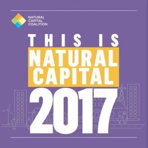 El documento incluye casos de estudio, historias, trabajos y eventos celebrados en todo el mundo en torno al capital natural.