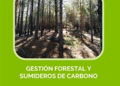 Los sumideros son aquellas actividades de gestión realizadas por el ser humano en el medio forestal capaces de aumentar el carbono en los diversos almacenes forestales: biomasa viva (aérea y raíces), carbono orgánico en suelos, y hojarasca y leña muerta».