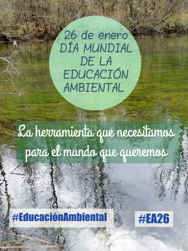 Los educadores ambientales nos facilitan la adquisición de conocimientos, habilidades y hábitos sobre aspectos tan relevantes como el respeto al medioambiente, la solidaridad y la responsabilidad con nuestro planeta.