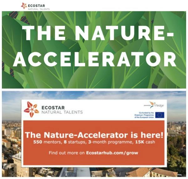 El Nature-Accelerator de ECOSTAR reúne a un equipo multidisciplinar de investigadores y empresas dedicadas a la inversión relacionada con la naturaleza y la innovación en los sectores forestal, de la agricultura, los recursos naturales y el ecoturismo.