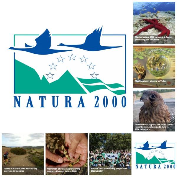 Indemares, de la Fundación Biodiversidad, logrado incrementar en tan solo seis años (de 2013 y 2015) la superficie marina protegida de España de un 1 % a un 8 %.
