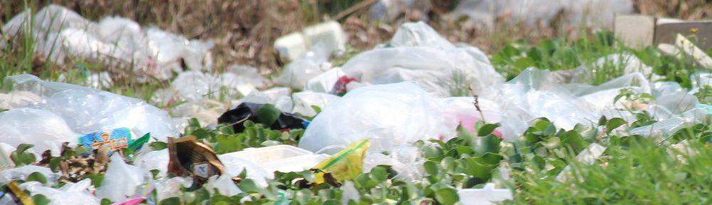 El nuevo RD supone la transposición al ordenamiento español de la Directiva comunitaria al respecto y convierte a España en el tercer país de la Unión Europea en prohibir el uso de bolsas de plástico.